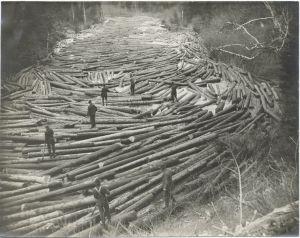 Log driving